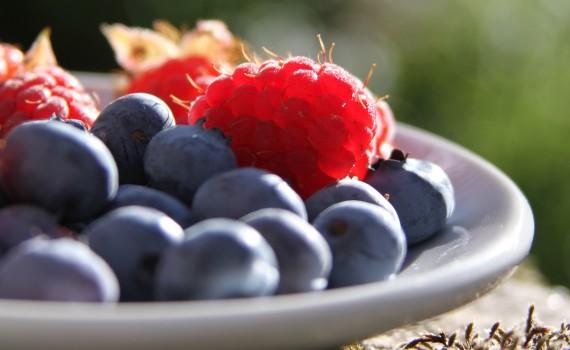 HACCP Frutas