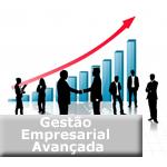 gestao_empresarial_avancada_icon2
